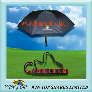 2 Fold Black Umbrella with Carrying Bag
